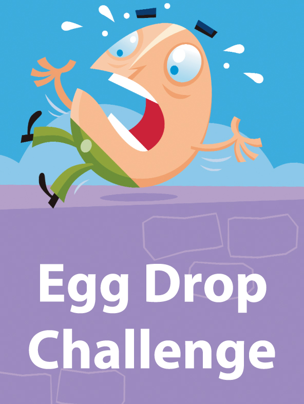 egg drop essay